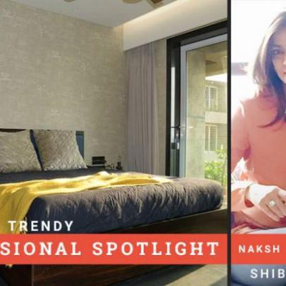 Professional Spotlight: Shibani Mehta
