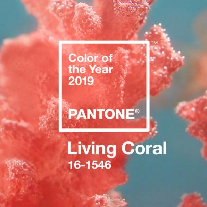 Living Coral - Pantone Colour of the Year 2019 – Stylish Colour Shade for Your Home