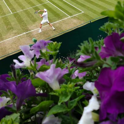 Game, Set and Match! Wimbledon-Inspired Home Décor
