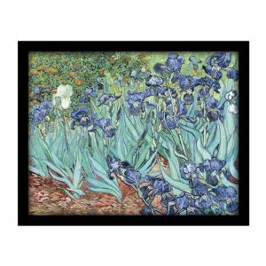 iris-1888-by-vincent-van-gogh-s - art-prints