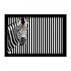 zebra-on-striped-background-looking-at-camera-s - art-prints