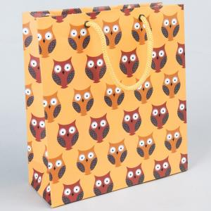 paper-ajrakh-and-owl-printed-bag - gifts